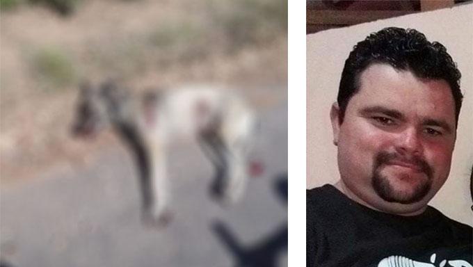 Polícia Civil investiga motorista por agredir cachorro em Apodi
